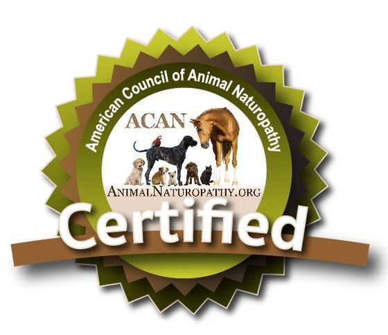 American Council of Animal Naturopathy Certified